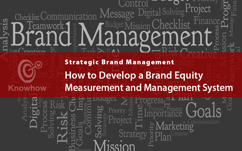 How to Develop a Brand Equity Measurement and Management System