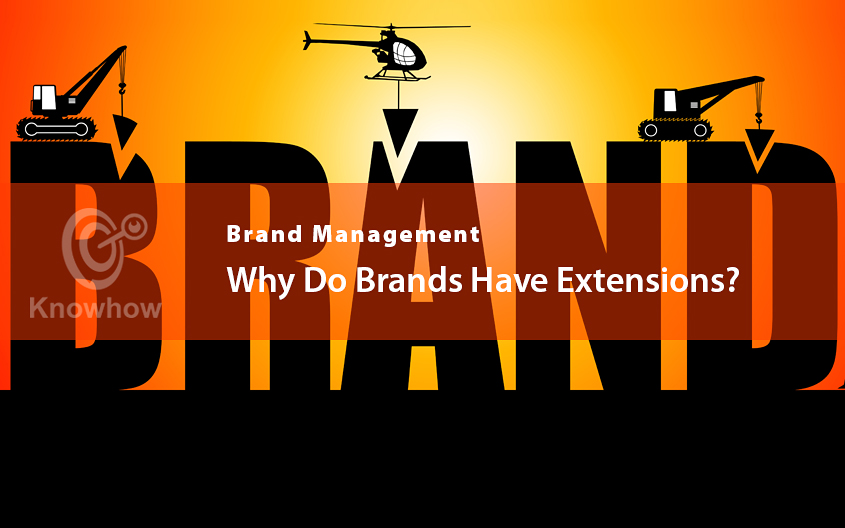 Why Do Brands Have Extensions?